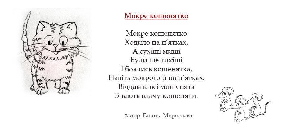 mokre_koshenya